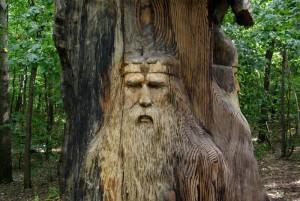 Полезные ссылки_Дерево рода